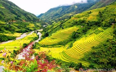 Bình giảng bức tranh tứ bình trong bài thơ Việt Bắc