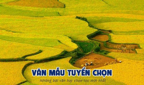 phan tich bai tho dat nuoc nguyen khoa diem - [Văn mẫu tuyển chọn] Phân tích bài thơ Đất nước của Nguyễn Khoa Điềm