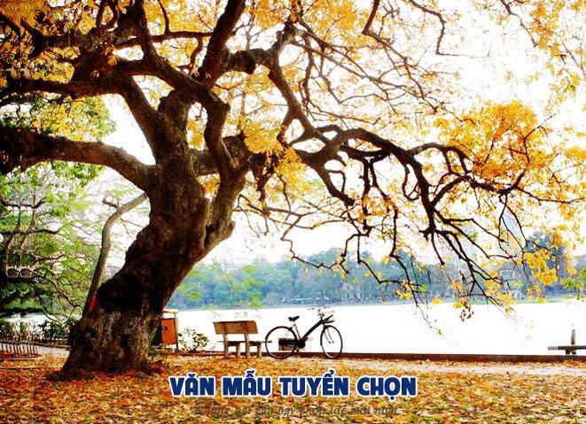 phan tich truyen ngan mua la rung trong vuon - [Văn mẫu tuyển chọn] Phân tích truyện ngắn Mùa lá rụng trong vườn của Ma Văn Kháng