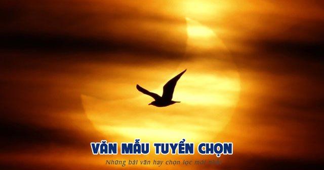 van mau tuyen chon phan tich bai tho chieu toi cua ho chi minh - [Văn mẫu tuyển chọn] Phân tích bài thơ Chiều tối của Hồ Chí Minh